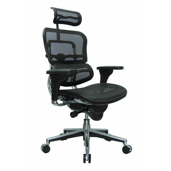 Cadeira Raynor Ergohuman Presidente